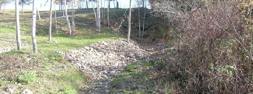 Mise en oeuvre du plan d'action du Lac St-Pierre