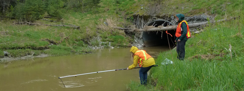 Projet priorisation des analyses d'eau de surface de l'OBV Témiscamingue
